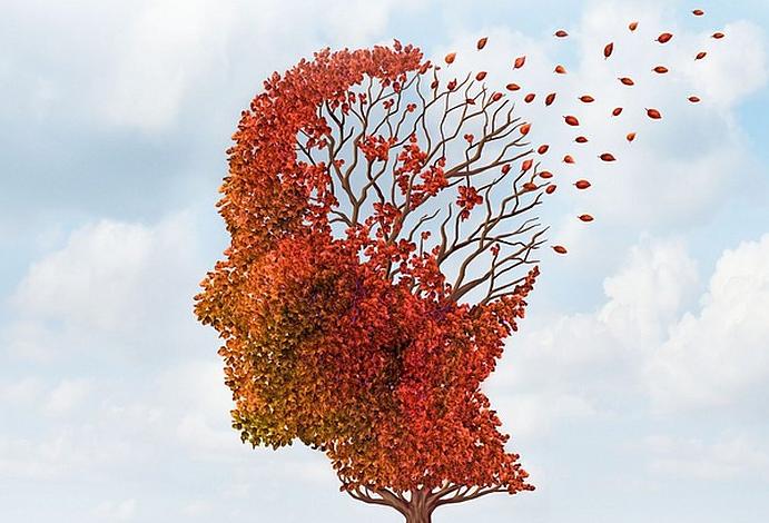 Demenza, disturbi del comportamento e interventi non farmacologici